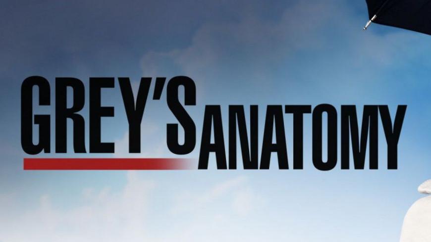 AUDIENCES TV. Succès à nouveau pour TF1 et « Grey's Anatomy »